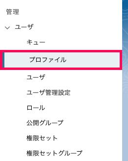「設定」画面左側のカテゴリ表示から「ユーザ」項目の下層に位置する「プロファイル」を指し示しているスクリーンショット